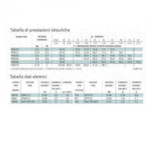 Elettropompa Periferica Lowara PM21/A Autoclave Monofase